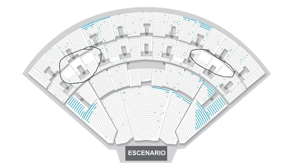 Posiblemente estén grabando los conciertos del Auditorio para un DVD Captur10