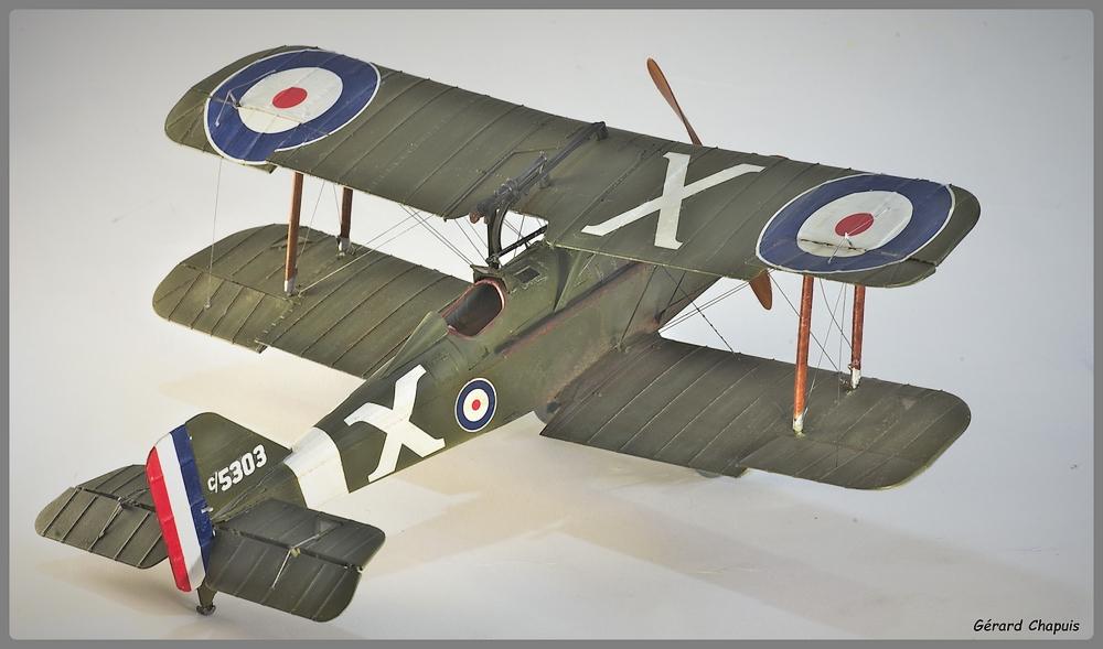 RAF S.E.5a Imgp9522