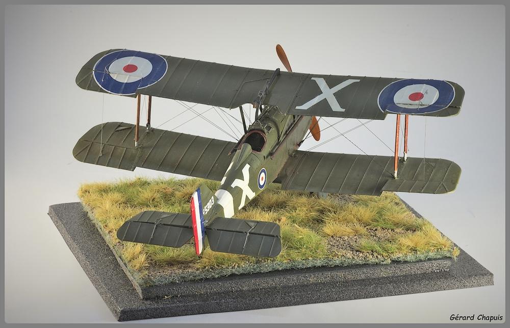 RAF S.E.5a Imgp9524