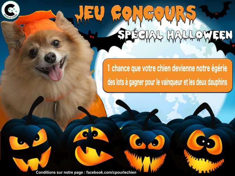 Concours Photo Halloween 45_210