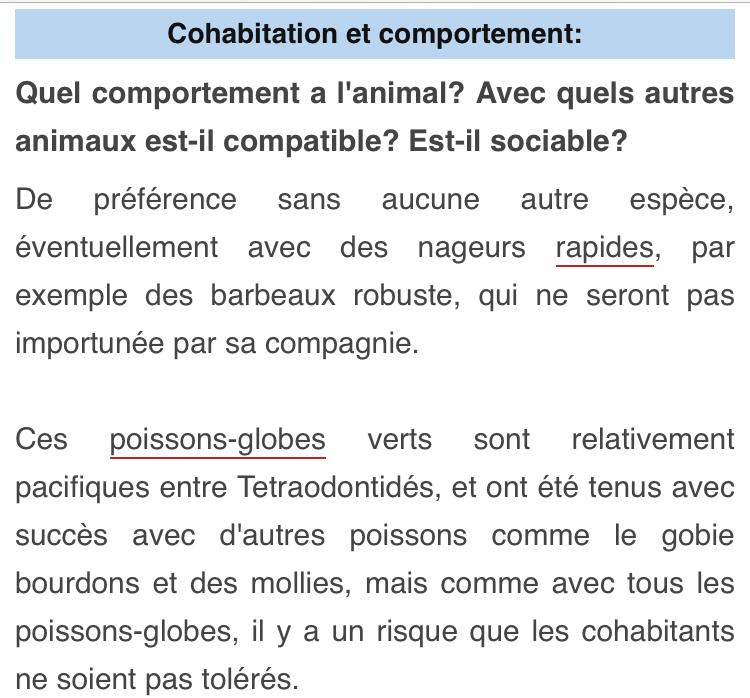 Cohabitation tétraodon biocellatus et cichlidés nains? 00833c10