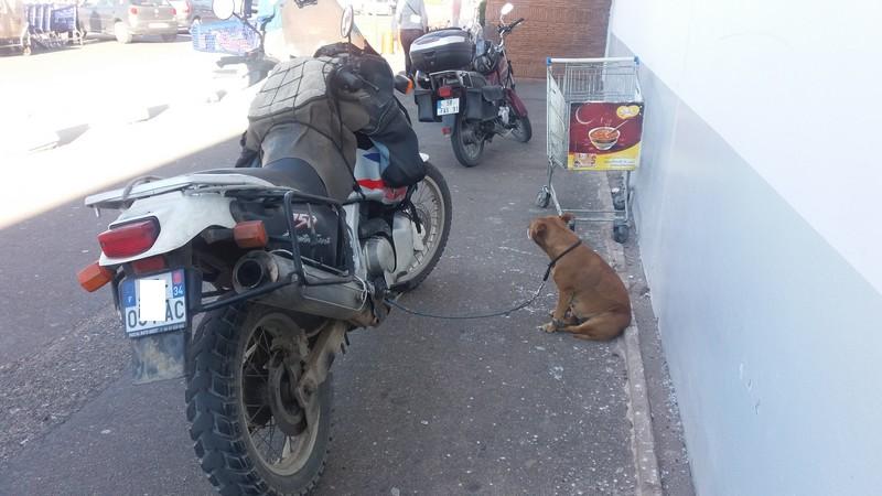 [Maroc/Assurances] Taxe douanière deux roues motorisés. 00000010