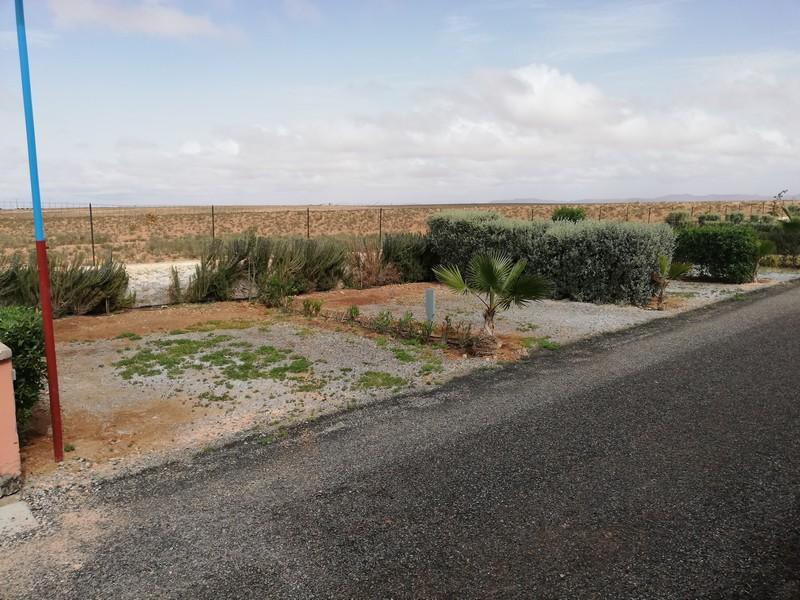 "[Maroc Camp/Découverte]  Futur camping ""Riad Maissa"" à Tiznit 7_peti10"