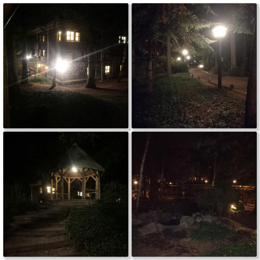[TR terminé] Fêtons nos 20 ans d'amour au Séquoia Lodge (en GFC et pack signature Roi Lion)... septembre 2019 - Page 4 Sql_so10