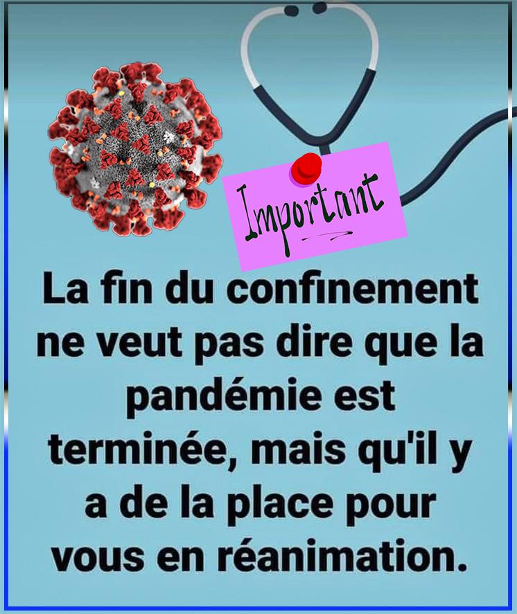 LES BLAGUES DES CONFINE(E)S - Page 9 Fin_de10