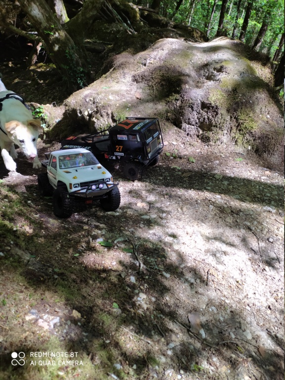 Spot forêt du Gavre Img_2018