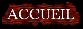 Présentation & Solution de Jeu : Choisis ton Minou Accuei10