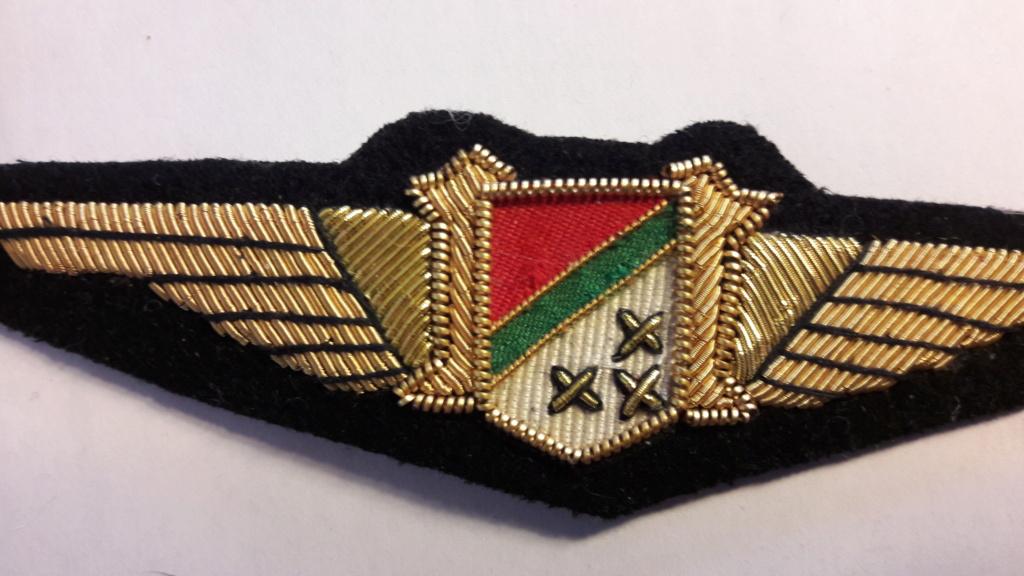 Insignes Congo Belge  20201020