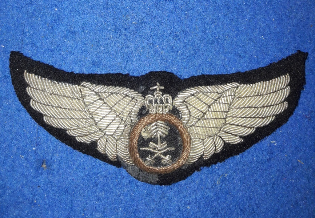 Identification insignes ailes aviateur 20201260