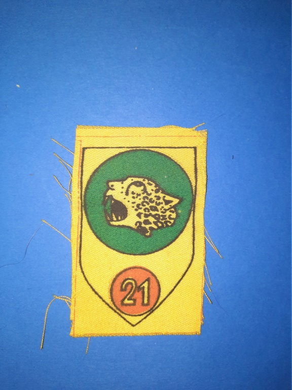 Identification insigne peint ? 20201291