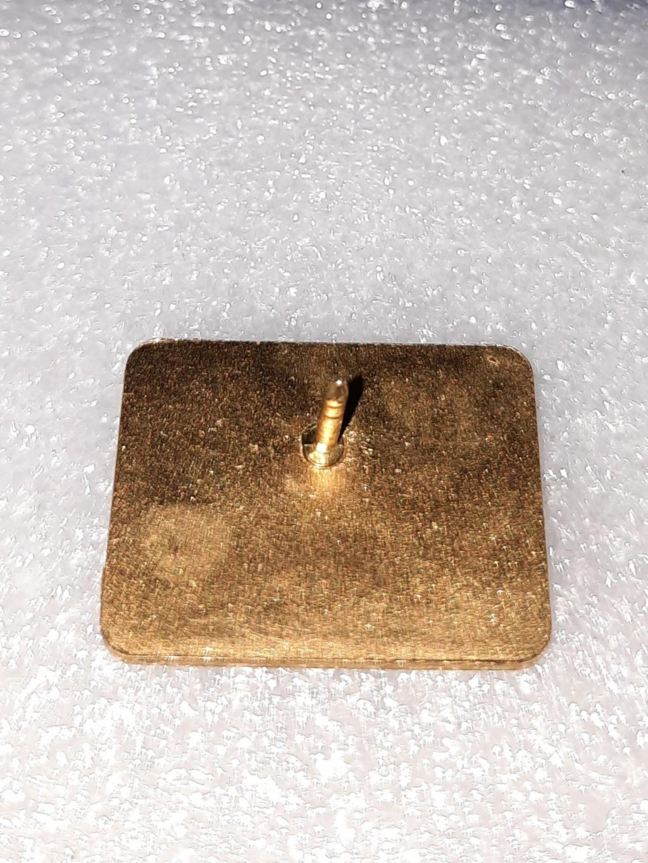 Bfoche pins REX 20210211