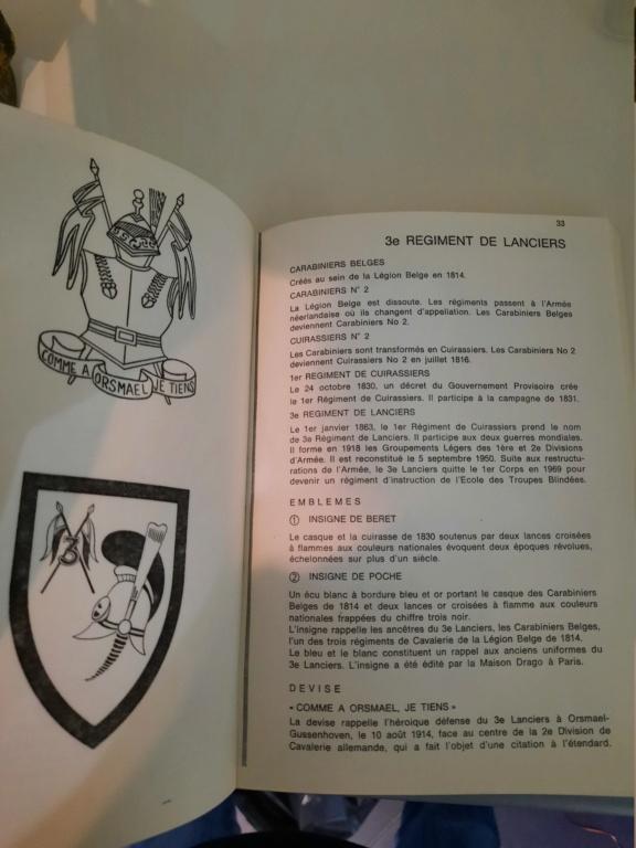 Insigne Drago à identifier avec casque de cuirassier 2 flammes et numéro 3  20210725