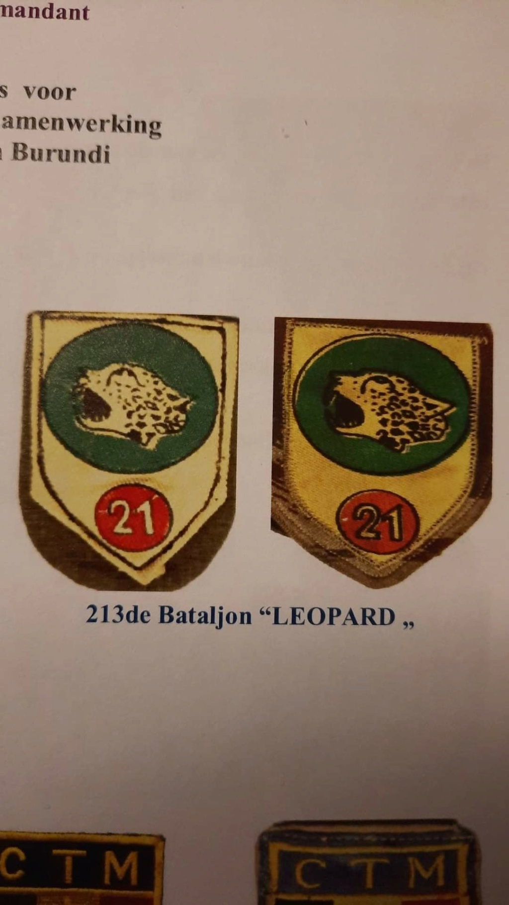 Identification insigne peint ? Fb_img11