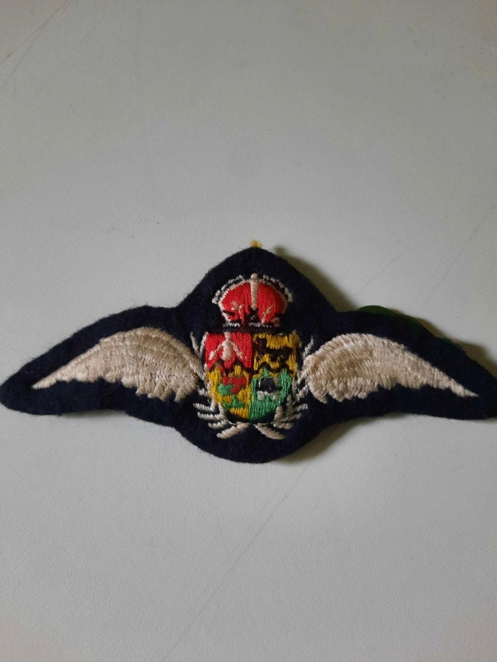 South African Air Force pilot wing  Estimation Image-13