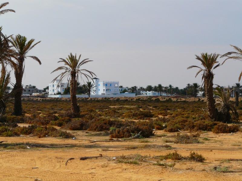 Ptit week end a Djerba ... P1060023