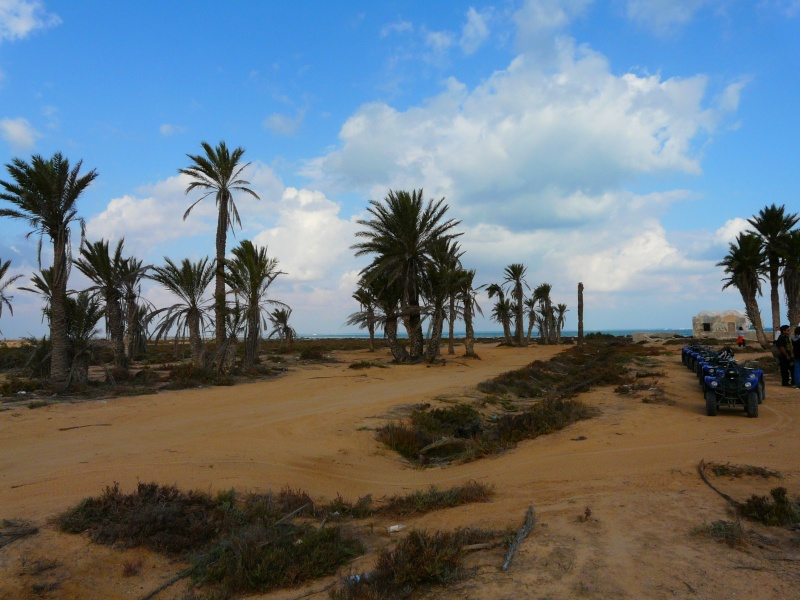 Ptit week end a Djerba ... P1060027