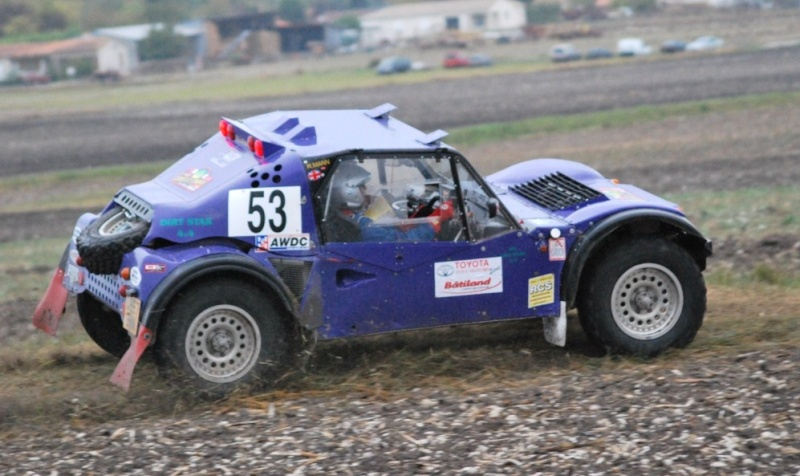 buggy - Request for Photo's Purple Buggy 53 01710