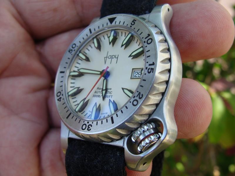 La montre du vendredi 7 août 2009 Dsc00018