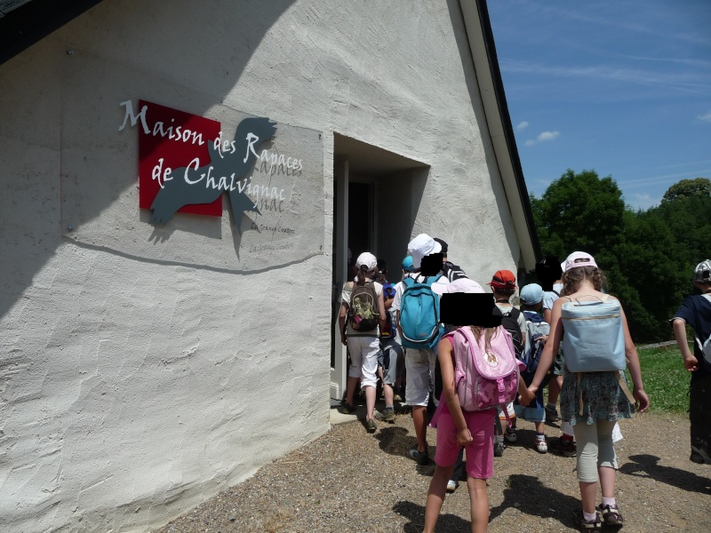 La Maison des rapaces à Chalvignac Chal10