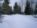 Février 2009 Cimg4147