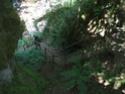 Les photos des Gorges de la Jordanne Cimg5238