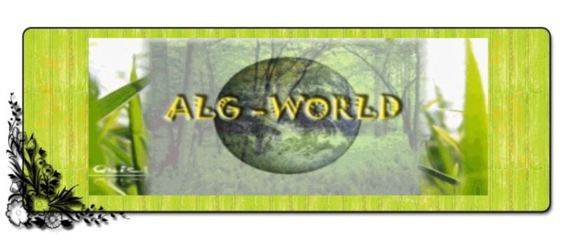 ALG WORLD