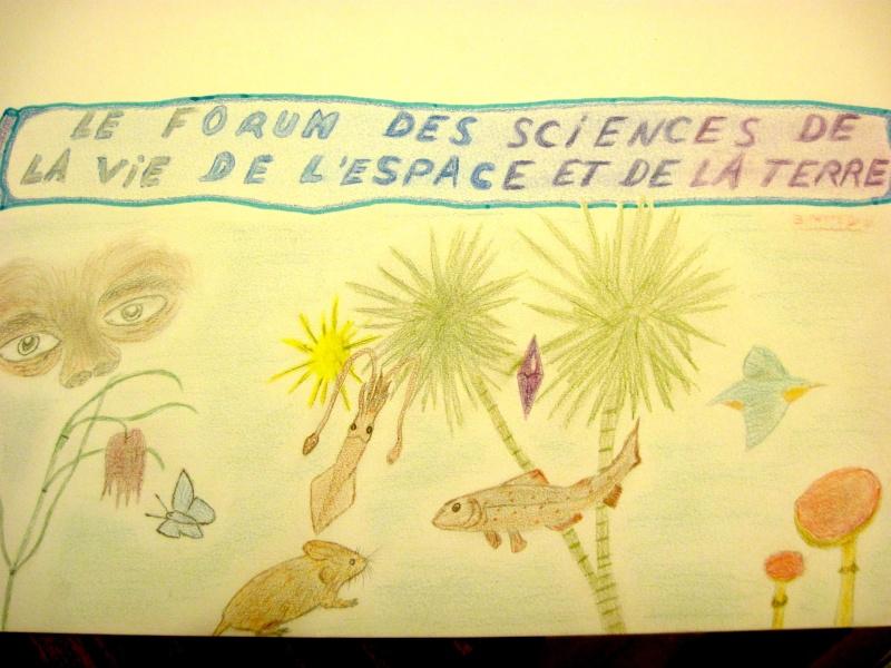 Une bannière pour ce forum - Page 3 Nouvel12