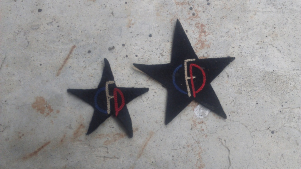 RIF, Groupe Franc Pommies, décidément c'est la saison des insignes! Dsc_0031