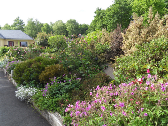 le jardin de danyland 004-sd12