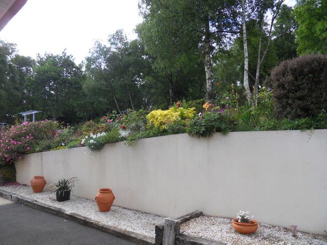 le jardin de danyland 025-sd11