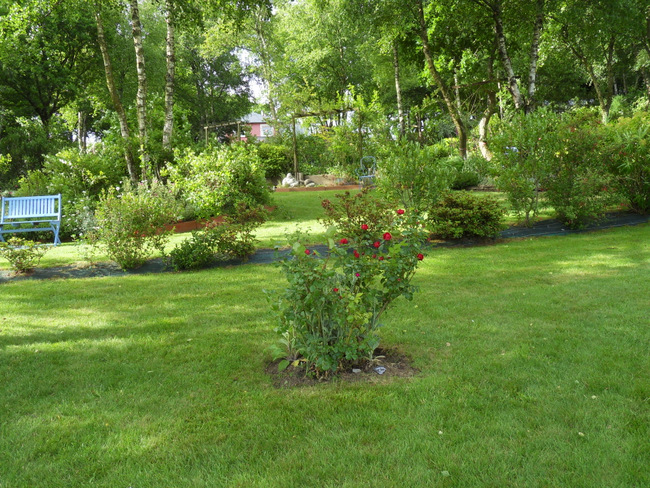 le jardin de danyland 035-sd10