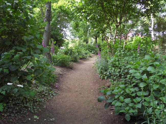 le jardin de danyland 044-sd10