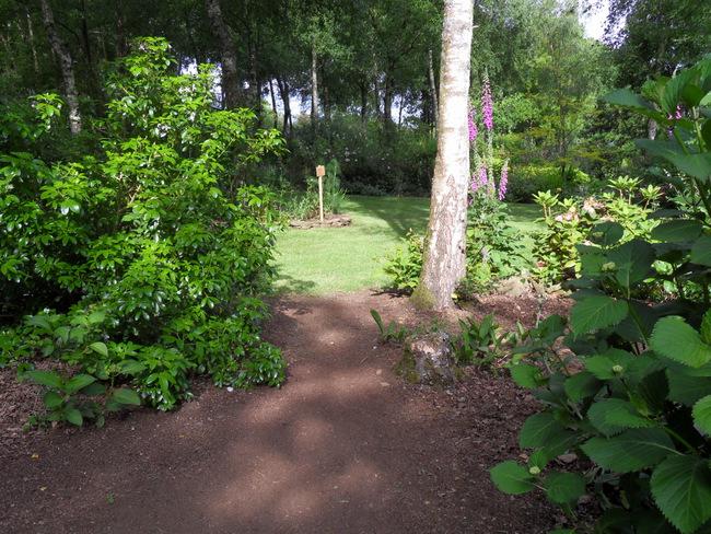 le jardin de danyland 047-sd12