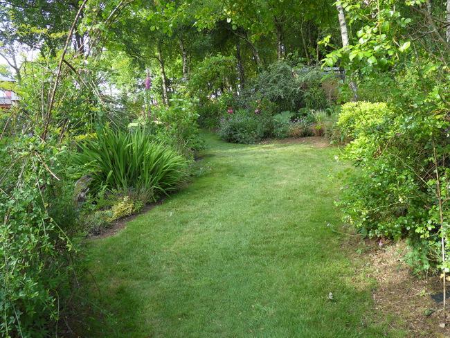 le jardin de danyland 056-sd10