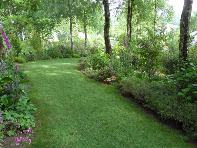 le jardin de danyland 075-sd10