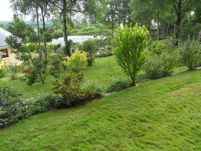 le jardin de danyland 079-sd10