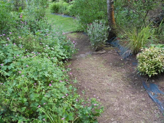 le jardin de danyland 086-sd10