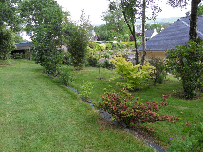 le jardin de danyland 091-sd11