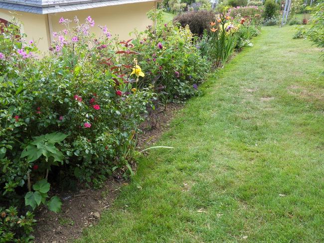 le jardin de danyland 092-sd10