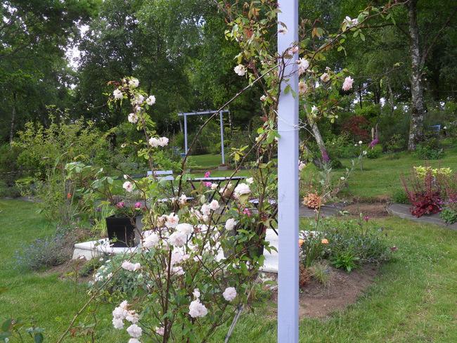 le jardin de danyland 099-sd12