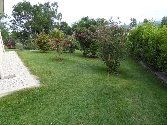 le jardin de danyland 103-sd11