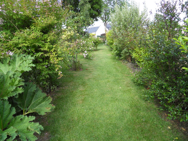 le jardin de danyland 111-sd10