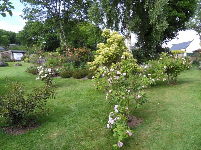 le jardin de danyland 115-sd10
