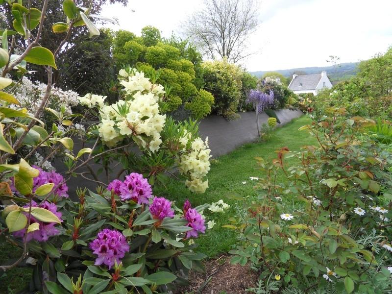 le jardin de danyland Sdc18710