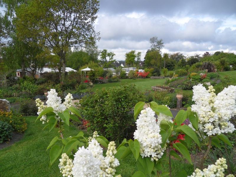 le jardin de danyland Sdc18711