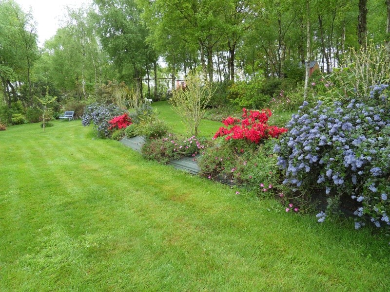 le jardin de danyland Sdc18814