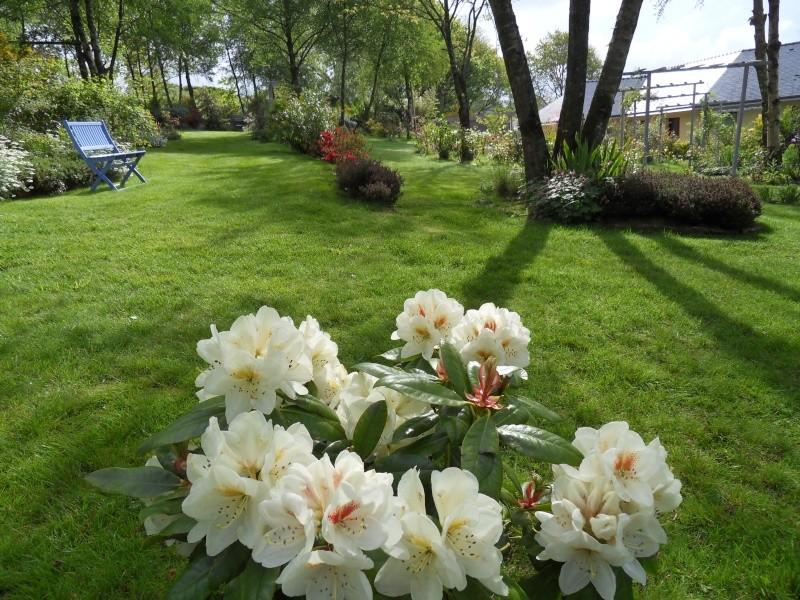 le jardin de danyland Sdc18817