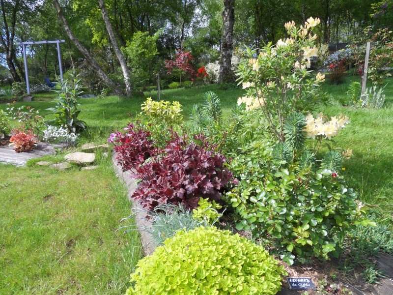 le jardin de danyland Sdc19024