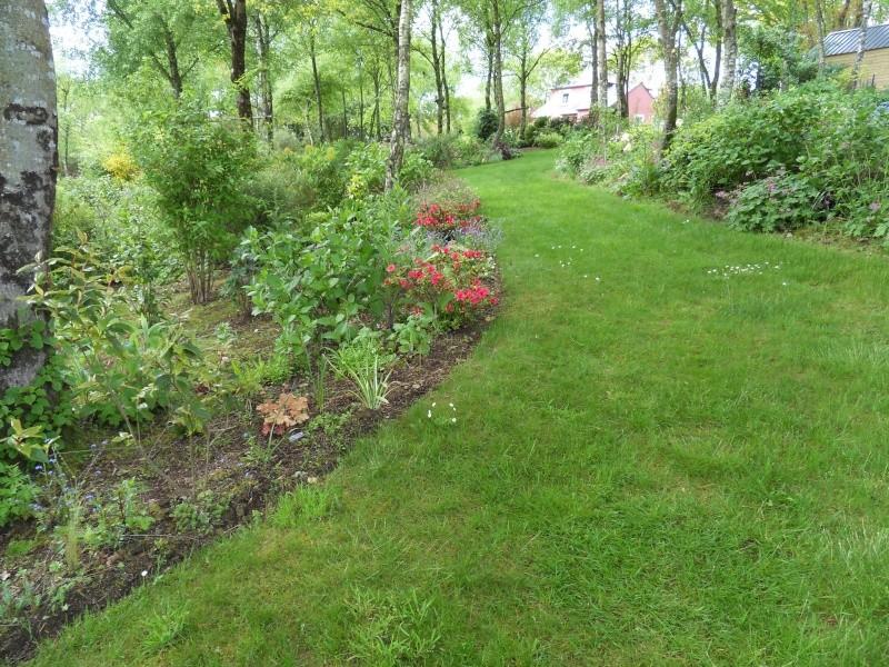 le jardin de danyland Sdc19029