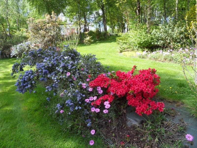 le jardin de danyland Sdc19030